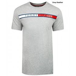 Camiseta Tommy Hilfiger Color Gris