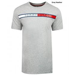 Camiseta Tommy Hilfiger Color Gris